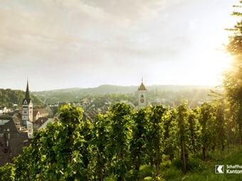 Blick vom Munot aus auf die Stadt Schaffhausen